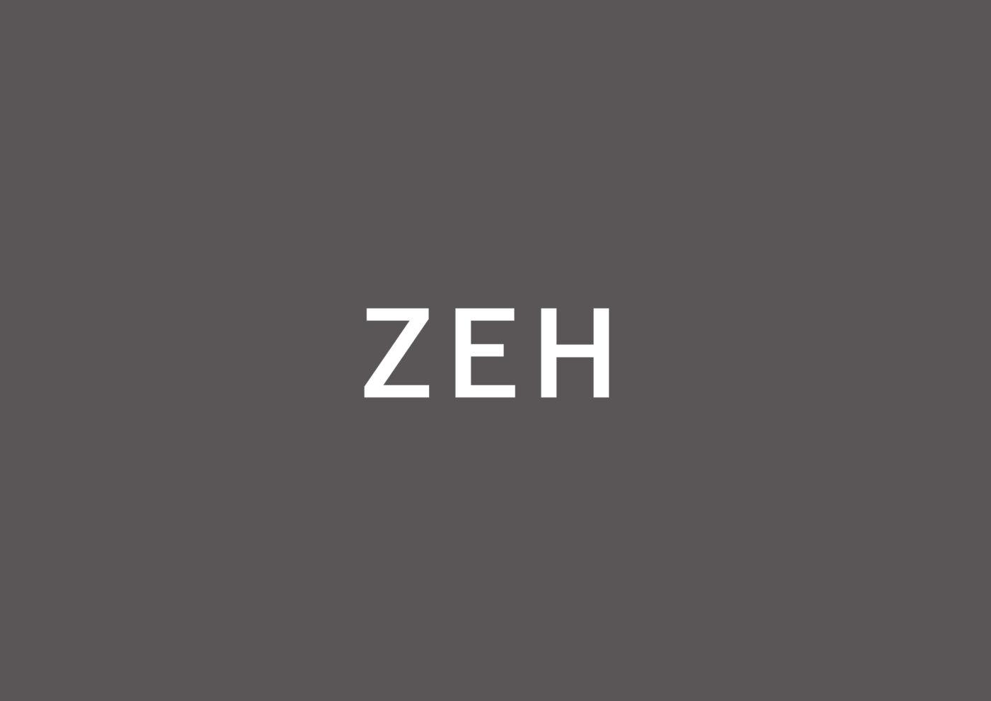 ZEH2019実績